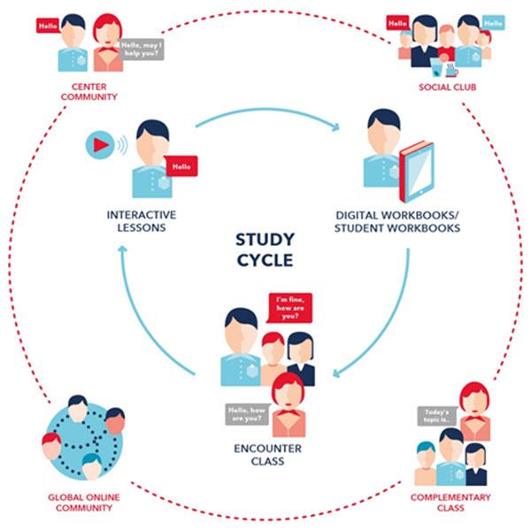 Cycle des cours d'anglais